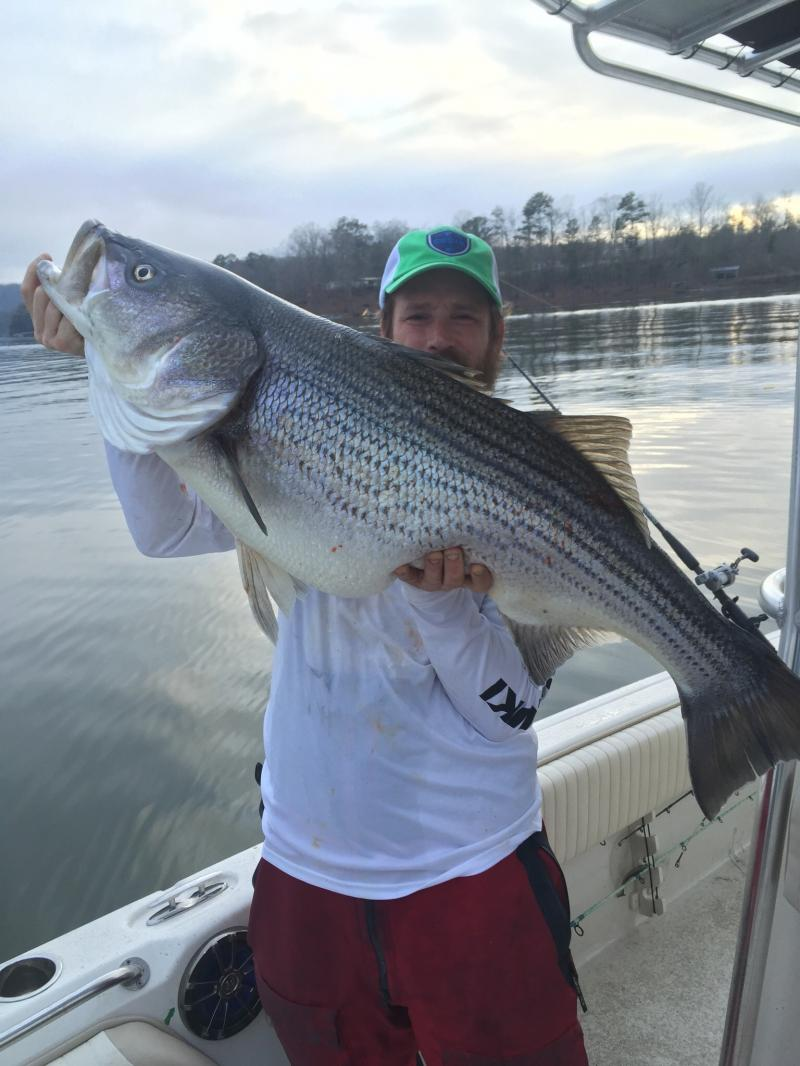 Got You Hooked Striped Bass Guide Service - Fishing Guide